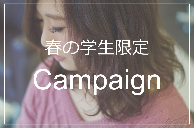 学生キャンペーン